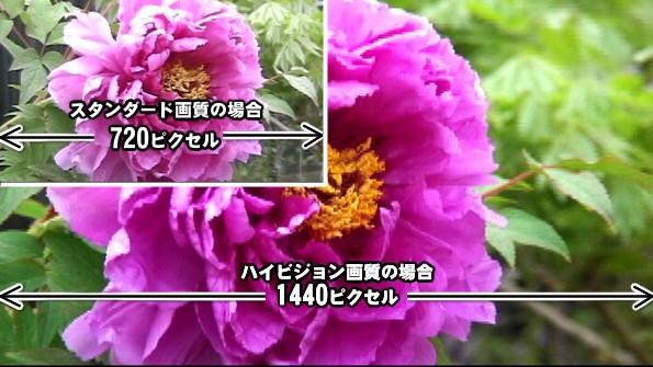 ハイビジョンとスタンダードの違い。720p以上の動画をハイビジョンと呼ぶ。