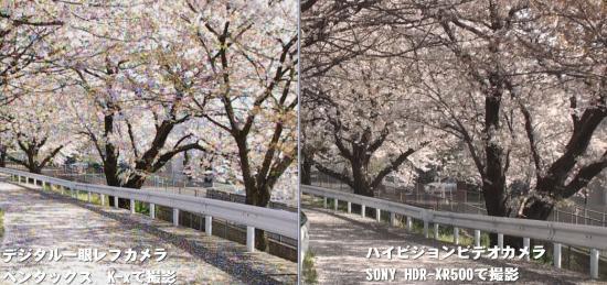 デジタル一眼レフとハイビジョンビデオカメラの比較